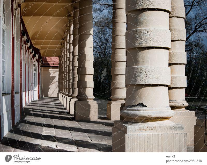 Alt, dick und rund Merseburg Sachsen-Anhalt Deutschland Kleinstadt Altstadt Bauwerk Architektur Säule Säulengang Sehenswürdigkeit Zusammensein gigantisch