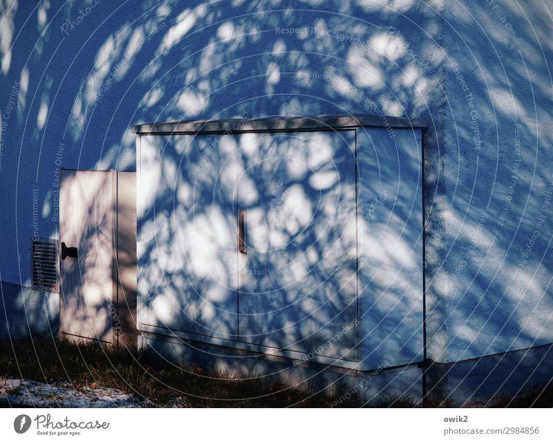 Schaltkasten Baumschatten Gebäude Mauer Wand Fassade verrückt Irritation Verteiler Ecke Farbfoto Außenaufnahme Menschenleer Textfreiraum links