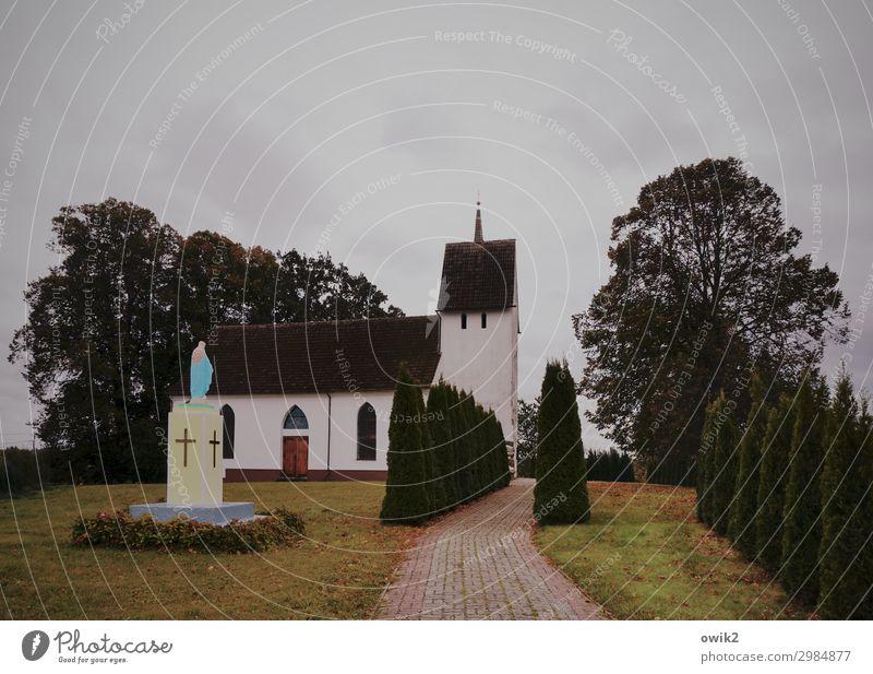 Kosciól Wolken Pflanze Baum Gras Polen Dorfkirche bevölkert Kirche Gebäude Statue Maria Katholizismus dunkel bescheiden zurückhalten sparsam demütig