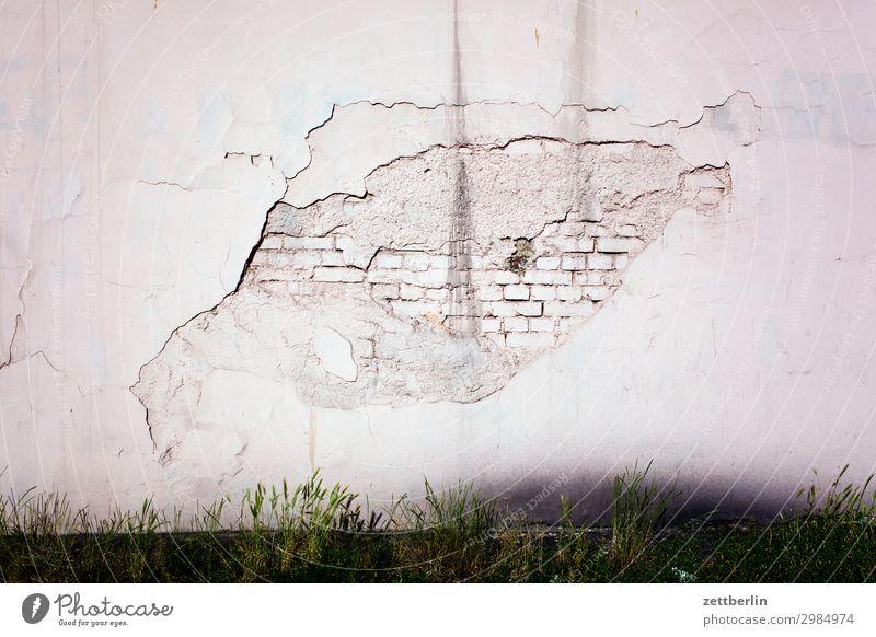 Schadhafte Stelle alt Altstadt antik Haus legnica malerisch Polen Schlesien Stadt verfallen Wohnhaus Wand Mauer Putz rau Schaden schadstelle Reparatur