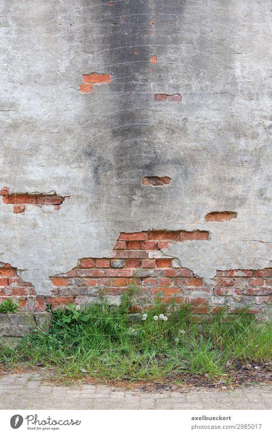 verfallene Mauer Hintergrund mit Textfreiraum Wand Fassade alt Verfall Grunge Hintergrundbild Putz Unkraut verwittert kaputt zerbröckelt Backstein Bürgersteig