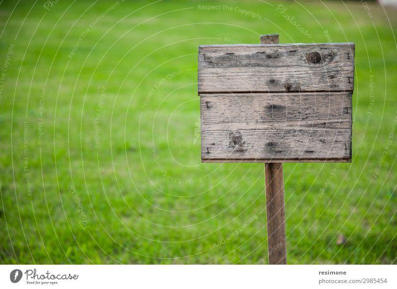 Holzbrett auf Gras Garten Umwelt Natur Pflanze Blume Park Straße Hinweisschild Warnschild alt natürlich wild grün Nostalgie Inserat Hintergrund Plakatwand