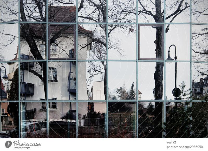 Gebäudescan Baum Bautzen Kleinstadt Altstadt bevölkert Haus Mauer Wand Fassade Fenster Straßenbeleuchtung Glasfassade Spiegel Spiegelbild Metall eckig