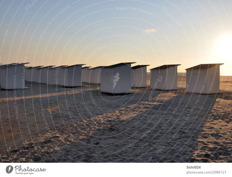 Seeblick Ferien & Urlaub & Reisen Sommer Sommerurlaub Strand Sand Himmel Schönes Wetter Nordsee Schwimmen & Baden Erholung träumen maritim blau braun