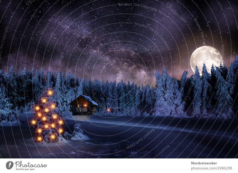Weihnachten im Wald bei Nacht Winter Schnee Winterurlaub Feste & Feiern Weihnachten & Advent Silvester u. Neujahr Landschaft Mond Vollmond Eis Frost Baum Haus