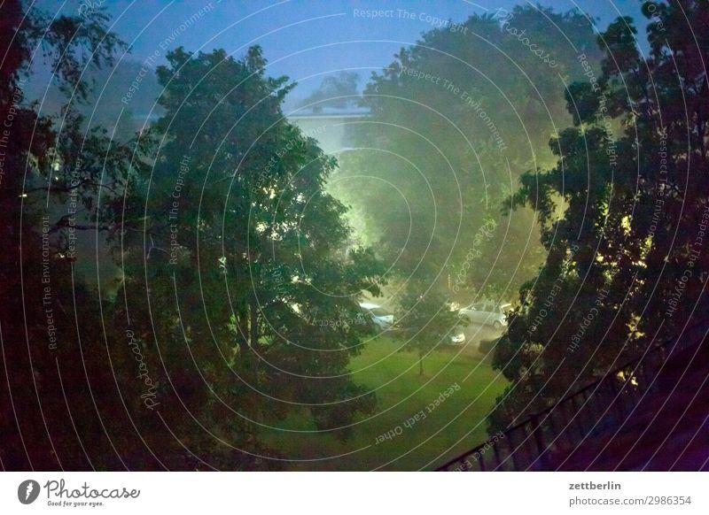 Regen bei Nacht Abend Baum Dämmerung Menschenleer Park Regenwasser starkregen Textfreiraum Wohngebiet Wiese Gras Rasen Niederschlag Nebel Dunst Wetter Sommer