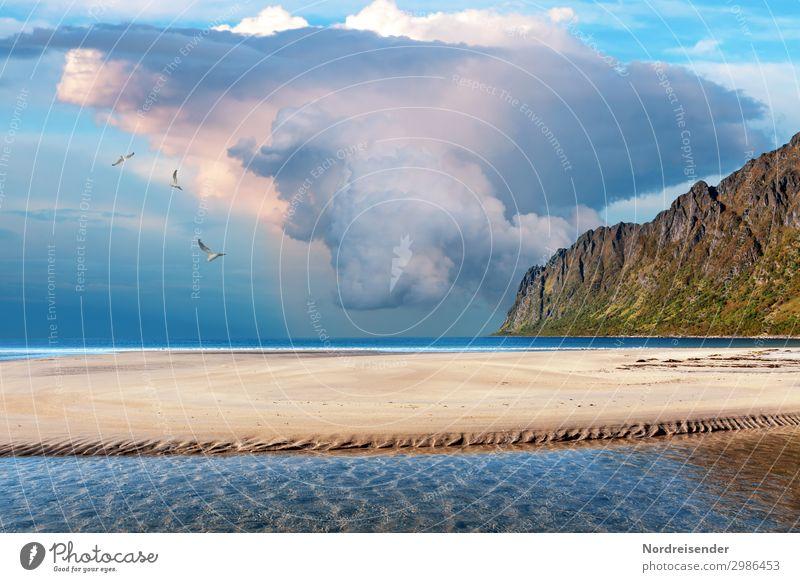 Gewitterzelle Ferien & Urlaub & Reisen Abenteuer Freiheit Camping Strand Meer Natur Landschaft Urelemente Wasser Wolken Gewitterwolken Unwetter Sturm Regen