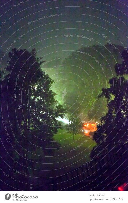 Regen in der Nacht Abend Baum Dämmerung Menschenleer Park Regenwasser starkregen Textfreiraum Wohngebiet Wiese Gras Rasen Niederschlag Nebel Dunst Wetter Sommer