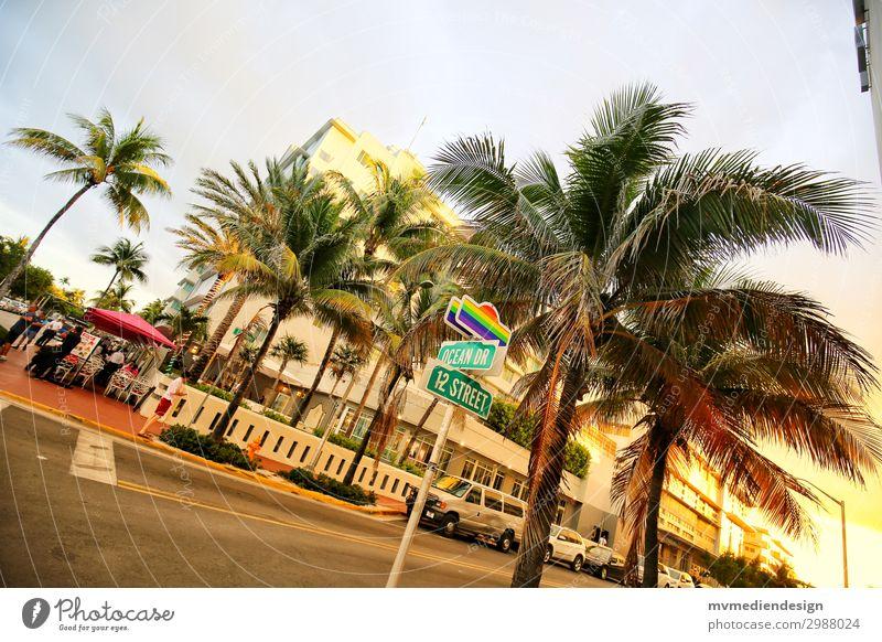 Gay Ocean Drive Erotik Straße verrückt USA Stadtzentrum trendy Restaurant Palme Homosexualität Straßenkreuzung seriös Wegkreuzung Miami Miami Beach