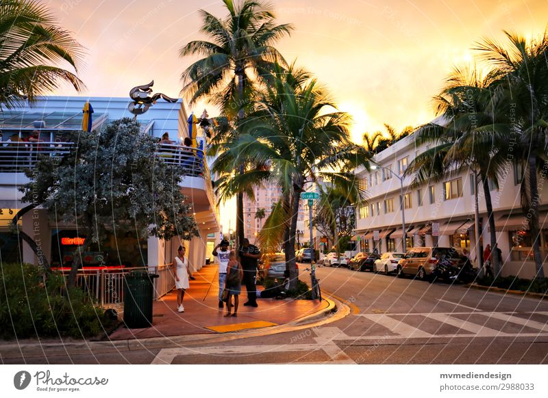 Miami Beach Stadt Stadtzentrum Straße Straßenkreuzung trendy Wärme Palme Mensch Sonnenuntergang Farbfoto Außenaufnahme