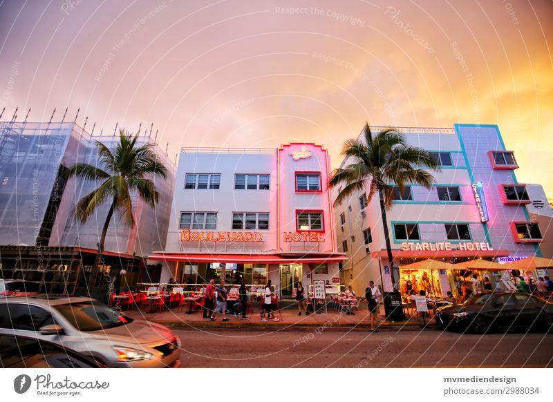 Hotels am Ocean Drive Lifestyle kaufen Stadt Straße trendy Originalität positiv Wärme Miami Miami Beach Stars and Stripes Florida Palme Baustelle PKW Mensch