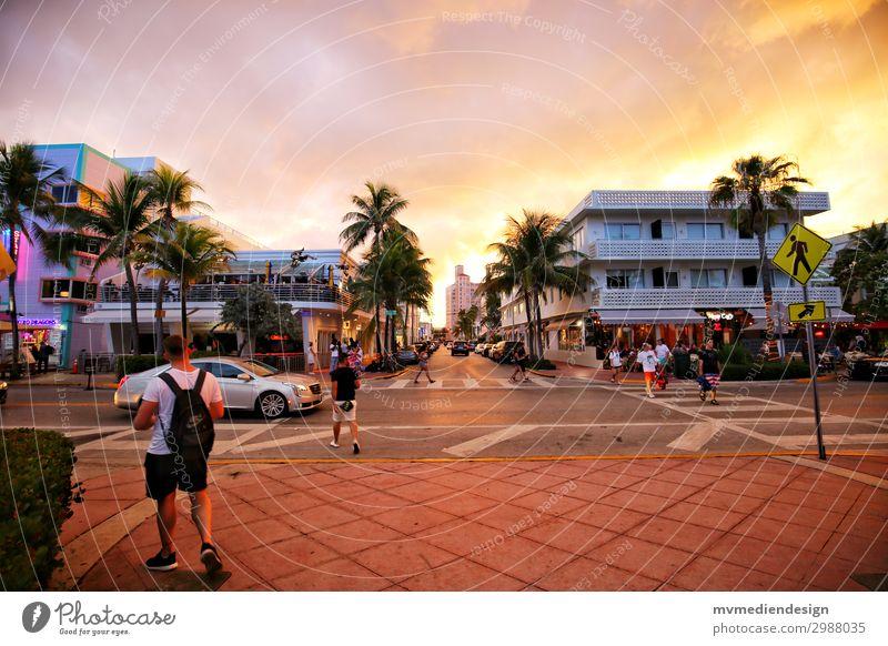 Miami Beach - Ocean Drive Mensch maskulin Straße Wärme Sonnenuntergang USA Palme Strand Restaurant Party Farbfoto Außenaufnahme