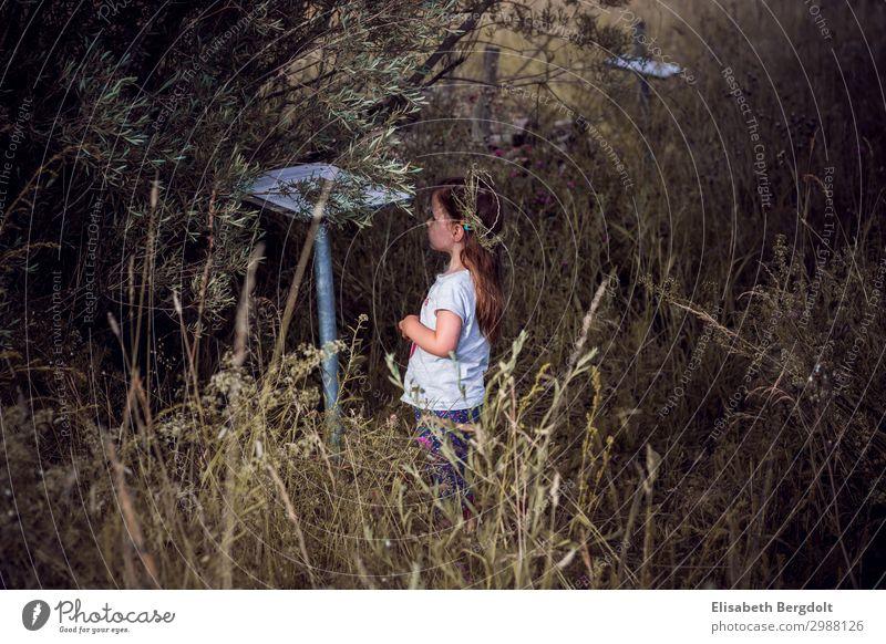 kleines Mädchen auf Entdeckungstour draußen Ausflug entdecken beobachten Kleinkind Neugier Sommer Kind Kindheit 1-3 Jahre Natur Landschaft Schönes Wetter Wiese