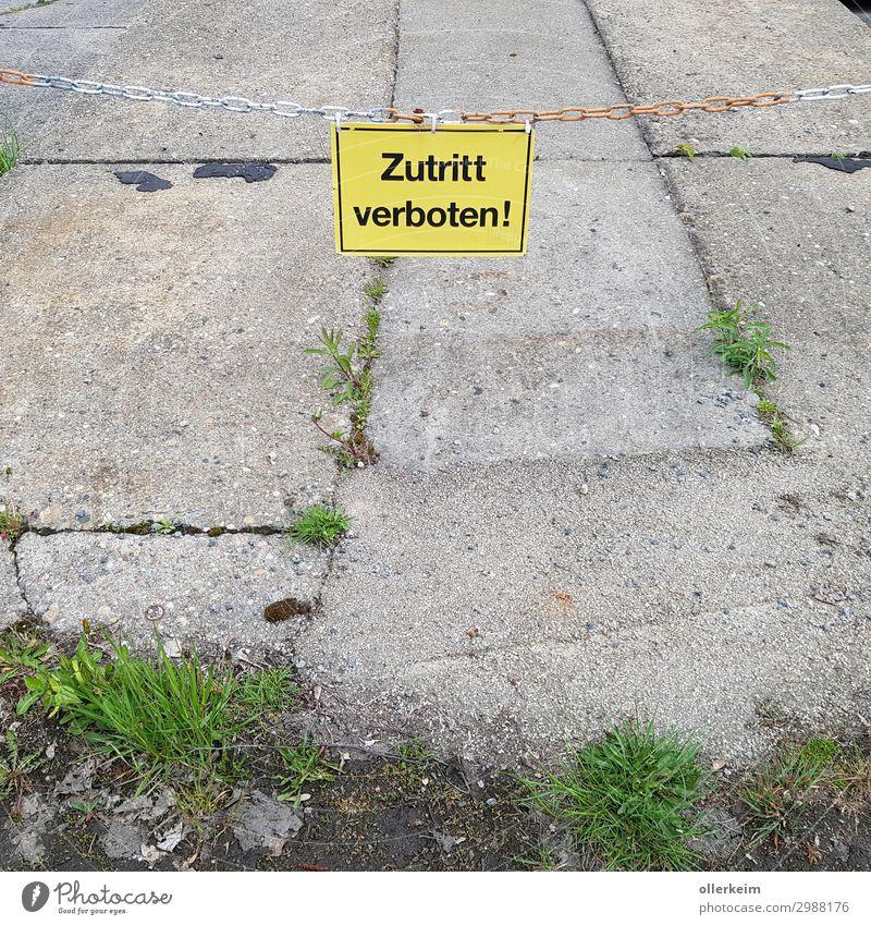 umgrüntes Verbot! Baustelle Natur Tier Erde Frühling Sommer Pflanze Gras Menschenleer Industrieanlage Bauwerk Mauer Wand Stein Beton Zeichen Schriftzeichen