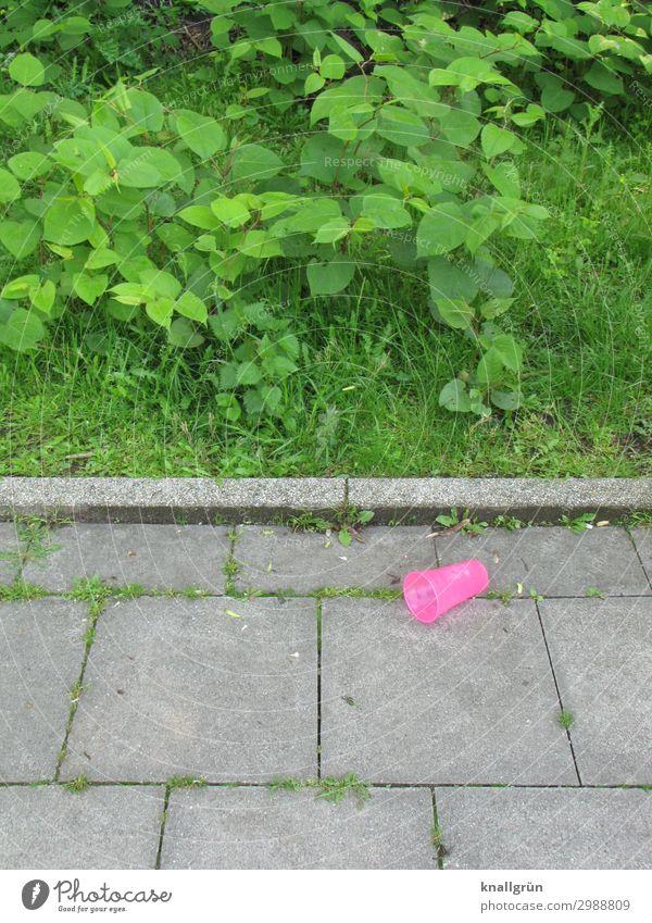 Shocking Pink Becher Plastikbecher Umwelt Pflanze Sträucher Stadt Bürgersteig liegen bedrohlich dreckig grau grün rosa Gefühle Stimmung Verantwortung vernünftig