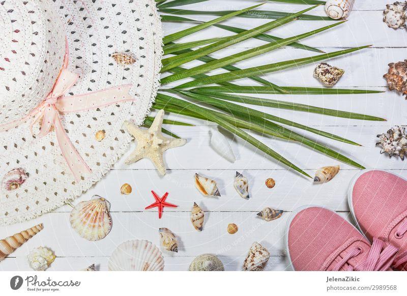 Hintergrund der Sommerferien Lifestyle Stil Design exotisch Freude Erholung Freizeit & Hobby Ferien & Urlaub & Reisen Tourismus Sommerurlaub Sonne Strand Meer