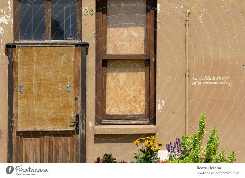 Isolation | Ödnis hinter Poesie und Blumen Sommer Haus Fenster Architektur Lifestyle Wand Stil Gebäude Kunst Garten Mauer außergewöhnlich braun Fassade