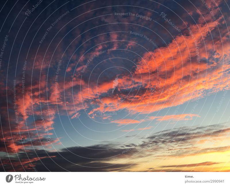 always luftig and forever yours Luft Himmel Wolken Horizont Sonnenaufgang Sonnenuntergang Schönes Wetter ästhetisch außergewöhnlich bedrohlich dunkel rebellisch