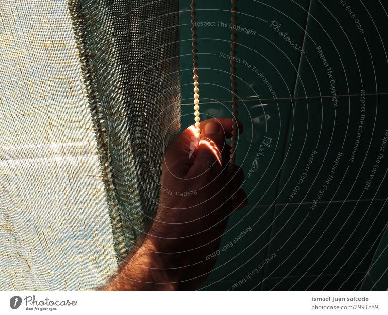 Mann Hand im Schatten Finger Handfläche Körperteil Handgelenk Arme Haut Mensch Lichterscheinung Sonnenlicht Silhouette gestikulieren Entwurf Symbole & Metaphern