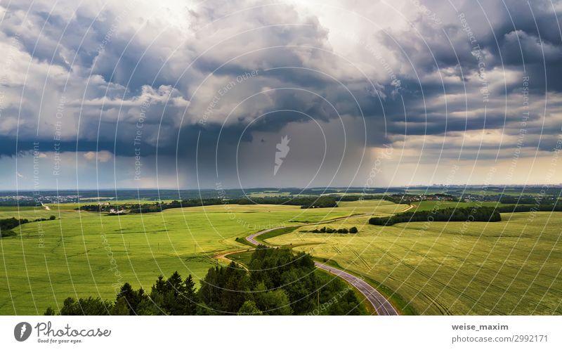Gewitter über einem Weizenfeld. Ländliche Szene Sommer Natur Landschaft Himmel Wolken Horizont Wetter Unwetter Wind Sturm Regen Gras Wiese Feld dunkel natürlich