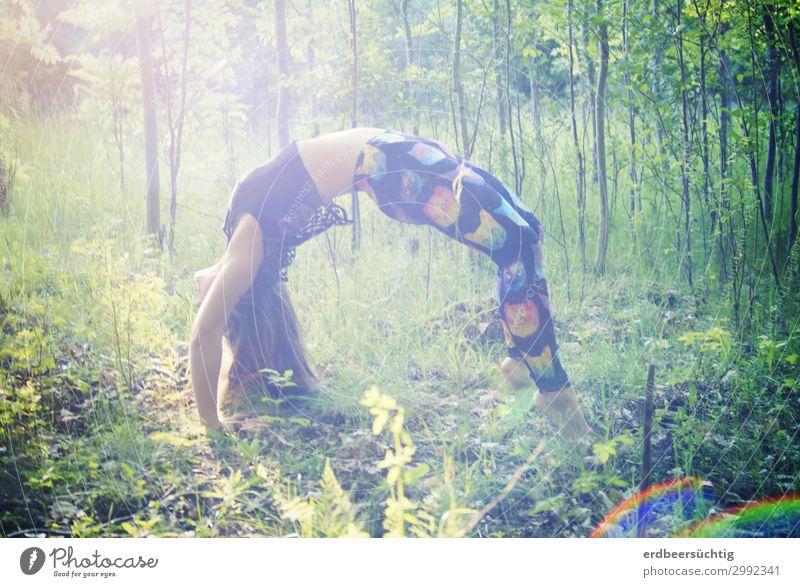 Brücke im Wald sportlich Fitness Leben Yoga feminin Körper 18-30 Jahre Jugendliche Erwachsene Natur Sonnenlicht Baum Gras Sträucher Leggings Sport trendy