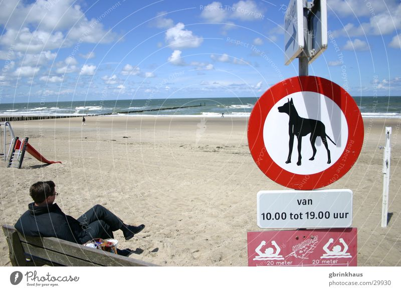 Doggies verboten Wasser Himmel Meer Strand Einsamkeit Sand warten Schilder & Markierungen sitzen Bank Langeweile Niederlande Flut Ebbe Holzpfahl