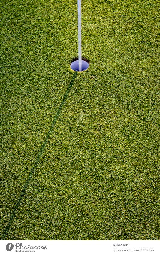Golf - Loch mit Schatten Natur grün weiß Landschaft Freude Lifestyle Wiese Sport Gras Spielen Freizeit & Hobby Aktion Erfolg lernen Fitness Rasen