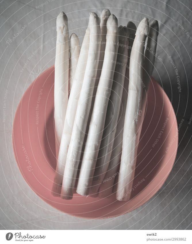 Lang und lecker Gesundheit Lebensmittel Ernährung Gemüse viele dünn Schalen & Schüsseln lang Spargel
