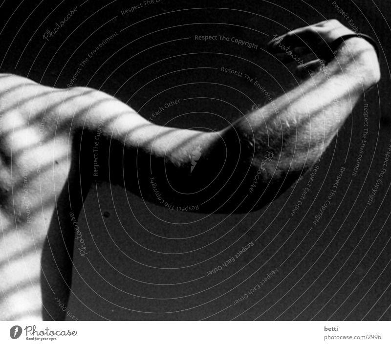 ein schöner rücken, kann .... Mann Rücken Arme Schatten Kontrast Schwarzweißfoto