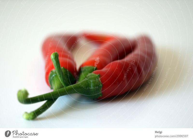 drei rote Chilischoten mit grünem Stengel liegen nebeneinander auf weißem Hintergrund Lebensmittel Gemüse Peperoni Ernährung einfach frisch Gesundheit klein