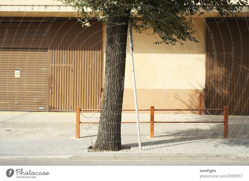baum Umwelt Sommer Baum Stadt Menschenleer Haus Industrieanlage Fabrik Bauwerk Gebäude Architektur Verkehrswege Straße berühren Vertrauen Sicherheit Schutz
