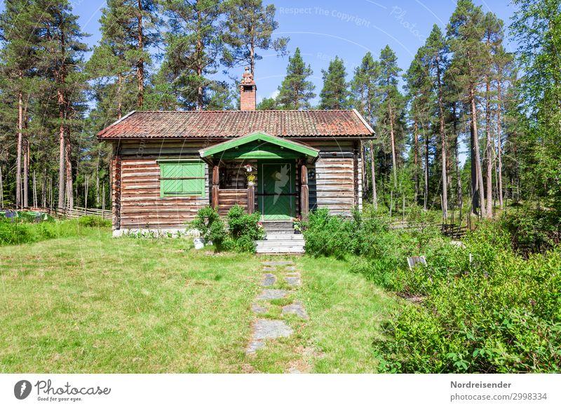 Schwedische Idylle Ferien & Urlaub & Reisen Tourismus Garten Natur Wolkenloser Himmel Sonne Sommer Schönes Wetter Baum Gras Sträucher Wiese Wald Stadtrand Hütte