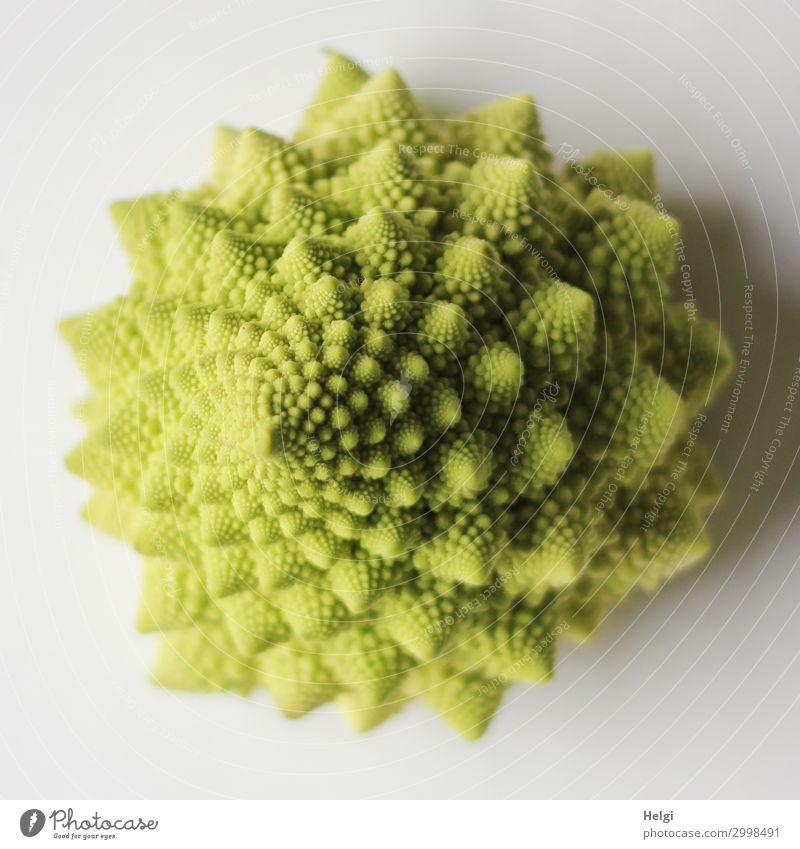 grüner Romanesco-Kohlkopf mit fraktalen Strukturen Lebensmittel Gemüse Ernährung Vegetarische Ernährung liegen außergewöhnlich einzigartig natürlich weiß