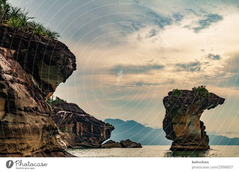 kobra Himmel Ferien & Urlaub & Reisen Natur schön Landschaft Meer Wolken Ferne Strand Küste Tourismus außergewöhnlich Freiheit Felsen Ausflug Abenteuer