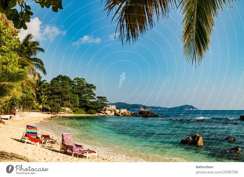 platz reserviert! Felsen Erholung Romantik Palme Landschaft Asien Insel Urwald Paradies Trauminsel Malaysia Farbfoto Tourismus Natur traumhaft Strand Himmel