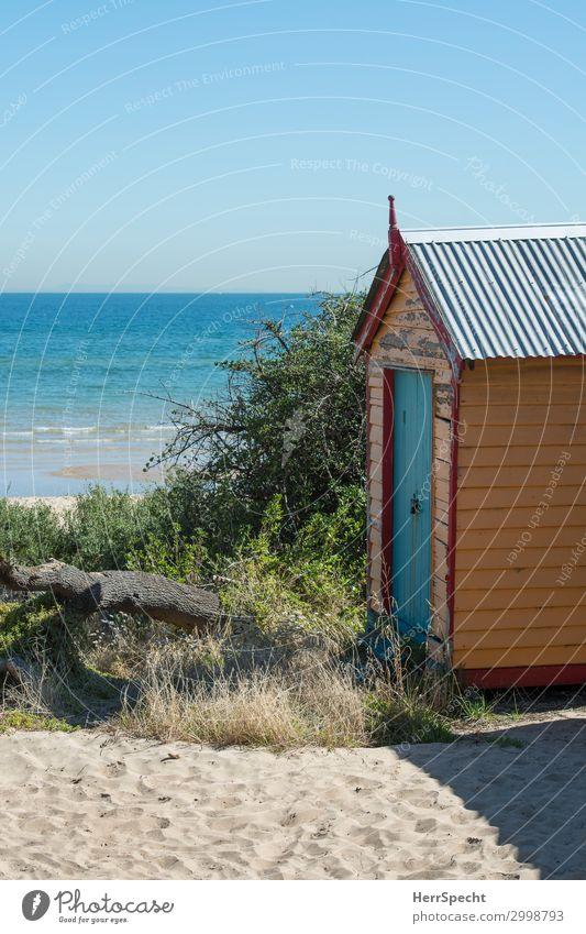 Room with a view Lifestyle Erholung ruhig Freizeit & Hobby Ferien & Urlaub & Reisen Tourismus Ferne Sommer Sommerurlaub Strand Meer Häusliches Leben Melbourne