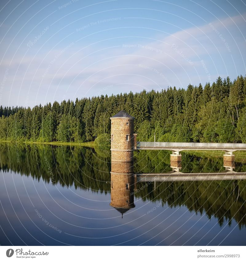 doppelter Turm - Talsperre Cranzahl Umwelt Natur Landschaft Wasser Himmel Sommer Schönes Wetter Teich See Trinkwasser Wald Brücke Bauwerk Erholung erholsam nass