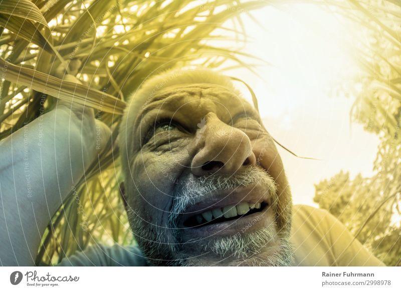 Ein Mann sucht Schatten Mensch Erwachsene Männlicher Senior Kopf 1 Umwelt Natur Pflanze Wolkenloser Himmel Sonne Sonnenlicht Sommer Klima Klimawandel Wetter