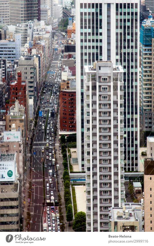 Metropole Tokio Lifestyle kaufen Ferien & Urlaub & Reisen Häusliches Leben Wohnung Haus Tokyo Japan Asien Hauptstadt Hafenstadt Stadtzentrum Fußgängerzone