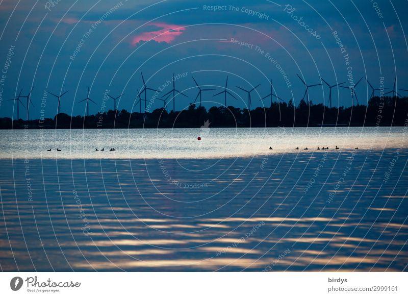 Windkraftanlagen - Im Aufwind Wasser Himmel Klimawandel See drehen authentisch dunkel nachhaltig blau rosa schwarz weiß Verantwortung vernünftig