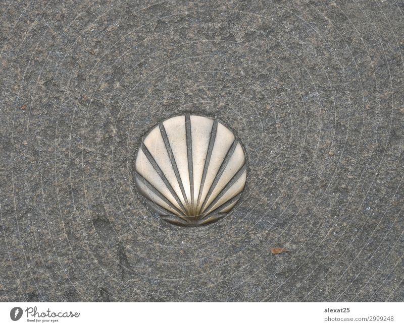St. James Shell Symbol des Weges Ferien & Urlaub & Reisen Ausflug Straße Stein Religion & Glaube Pfeil Hintergrund Camino katholisch compostela Regie heilig