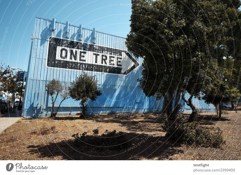 baum Umwelt Himmel Pflanze Baum Stadt Hafenstadt Haus Industrieanlage Fabrik Bauwerk Gebäude Architektur Mauer Wand Arbeit & Erwerbstätigkeit berühren