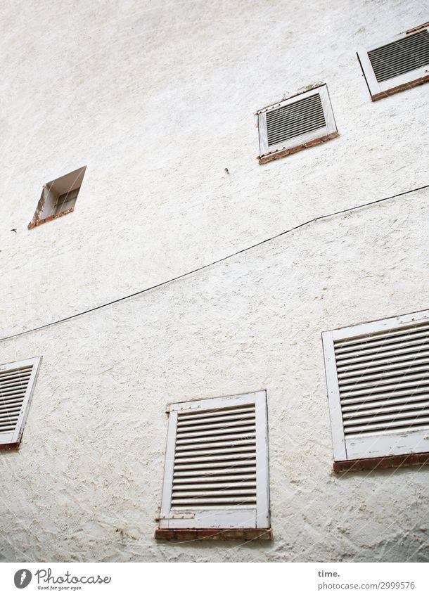 immer an der Wand lang, dann hoch und wieder zurück Haus Bauwerk Gebäude Architektur Mauer Fenster Fensterladen gruselig grau Sicherheit Ausdauer bescheiden
