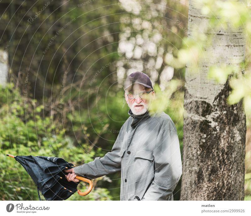 Richtungssuche maskulin Männlicher Senior Mann 1 Mensch 60 und älter Pflanze Baum Sträucher Wald laufen wandern Schirm Richtungswechsel zeigen Farbfoto