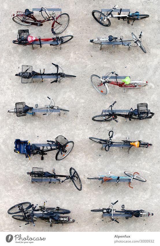 Zweireiher Stadt ruhig Umwelt Bewegung Kunst Zufriedenheit Fahrrad Ordnung Kreativität Perspektive Beginn Klima Güterverkehr & Logistik Team geheimnisvoll