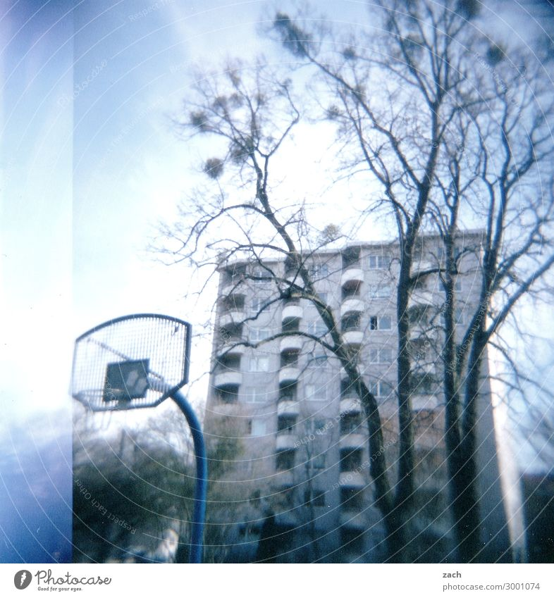 Bonjour Tristesse blau Stadt Baum Haus Wand Sport Spielen Mauer Fassade Häusliches Leben Hochhaus trist Fitness Vergangenheit Dorf Stadtzentrum