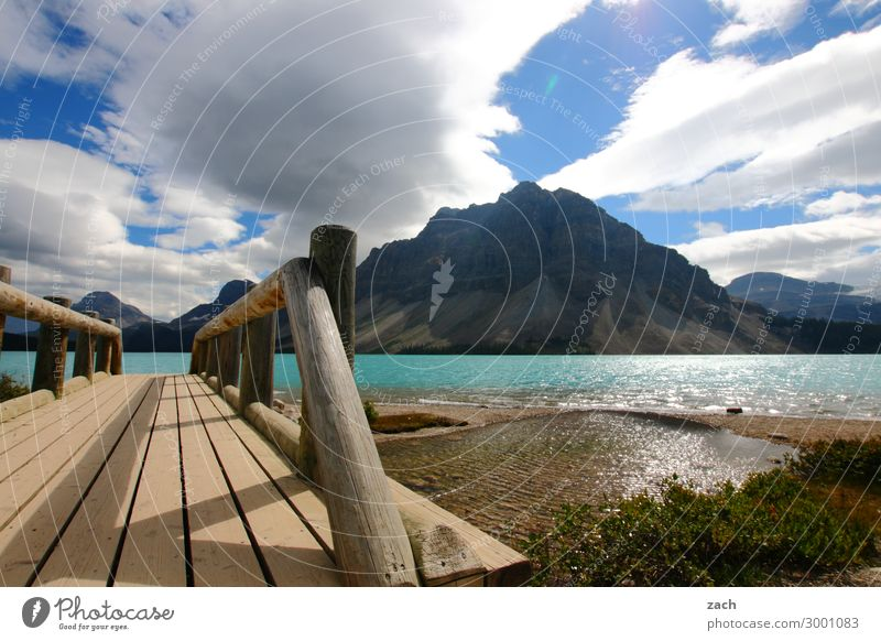 Bow Lake Natur Landschaft Wasser Himmel Wolken Schönes Wetter Pflanze Sträucher Hügel Felsen Berge u. Gebirge Rocky Mountains Gipfel Seeufer Bow lake Kanada