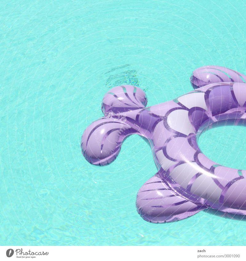 künstliches Becken Wellness Schwimmbad Schwimmen & Baden Sommer Sommerurlaub Wassersport Fisch Badeente Schwimmhilfe Rettungsring Badeurlaub Badetier Farbfoto