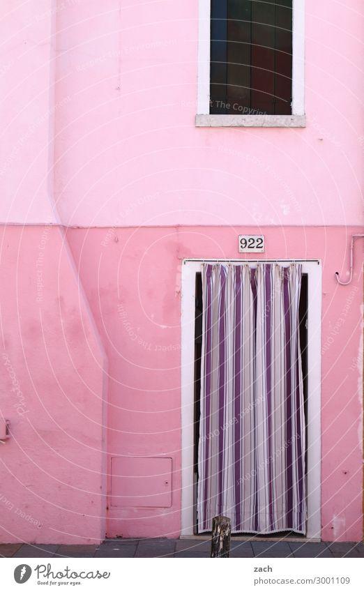 pink Häusliches Leben Haus Venedig Burano Italien Fischerdorf Altstadt Mauer Wand Fassade Fenster Tür Holz violett rosa Vorhang Farbfoto Außenaufnahme