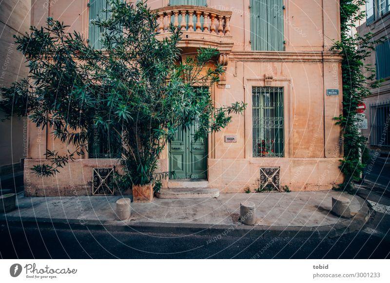 Hausfront mit Eingangstür Blume Sträucher Dorf Kleinstadt Altstadt Gebäude Mauer Wand Fassade Balkon Tür Straße ästhetisch elegant Idylle mediterran Farbfoto